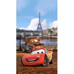 Fotozáclony Cars in Paris 140x245cm