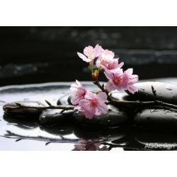 Fototapeta růžové květy na kameni 360 x 254 cm AG Design FTS 0185