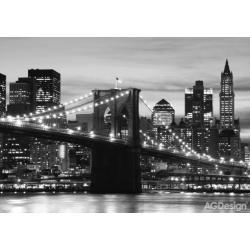 Fototapeta Brooklynský most černobílý 360 x 254 cm AG Design FTS 0199