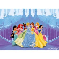 Fototapeta Disney princezny a zámek 360 x 254 cm AG Design FTD 0264
