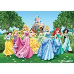 Fototapeta Disney princezny 360 x 254 cm AG Design FTD 2207