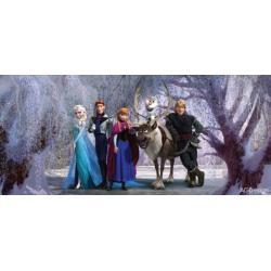 Fototapeta vliesová Disney ledové království 202 x 90 cm AG Design FTDN H 5347