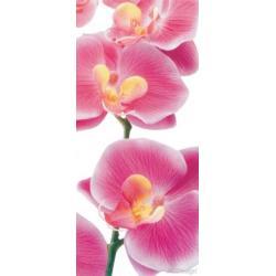 Fototapeta vliesová růžové orchideje 90 x 202 cm AG Design FTN V 2826