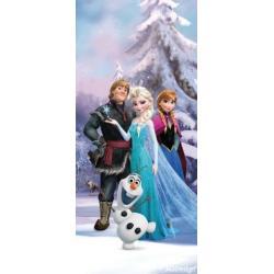 Fototapeta vliesová Disney Ledové království 90 x 202 cm AG Design FTDN V 5463