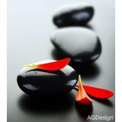 Fototapeta vliesová okvětní plátky na kamenech 180 x 202 cm AG Design FTN XL 2504
