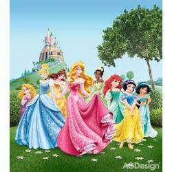 Fototapeta vliesová Disney princezny 180 x 202 cm AG Design FTDN XL 5112