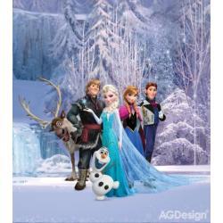 Fototapeta vliesová Disney Ledové království 180 x 202 cm AG Design FTDN XL 5139