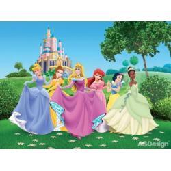 Fototapeta vliesová Disney princezny 330 x 255 cm AG Design FTDN5003