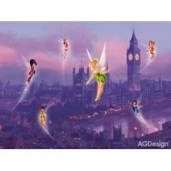 Fototapeta vliesová Disney víly v noci 330 x 255 cm AG Design FTDN5008
