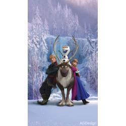 Fotozávěs Dimout Disney ledové království 140 x 245 cm AG Design FCP L 6104